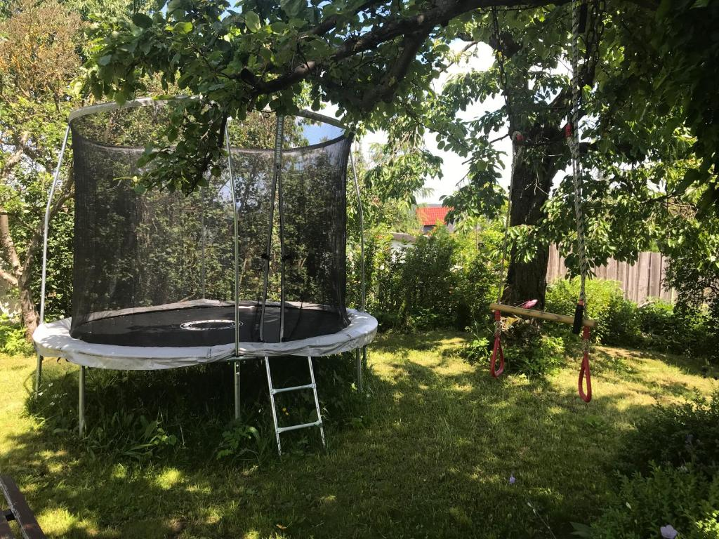 Ferienwohnung in Ilmenau mieten